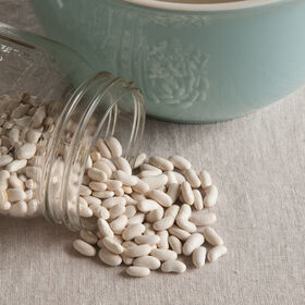 Cannellini Fresh Shell Beans