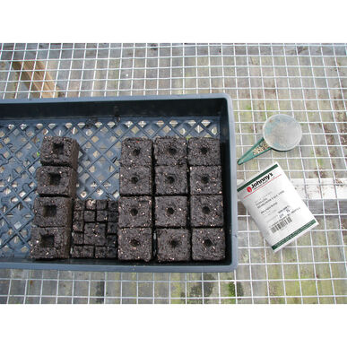 Soil Block Propagation Trays – 5 Count Trays, Domes, and Flats