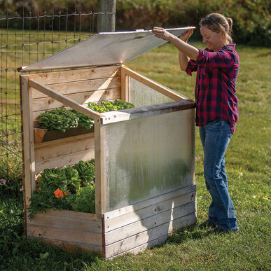"""Mini Maine"" Vertical Cold Frame Cold Frames"