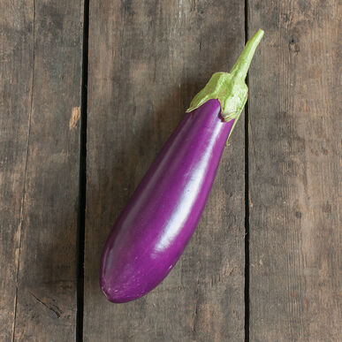 Dancer Italian Eggplants