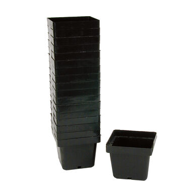 Mini Square Plastic Pots – 540 Count Containers