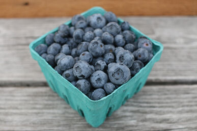 SpirWoRchlan 30Pcs Blueberry Seed Nutrition Delicious Healthy Fruit Tree Plant Giant Sweet Berry Salad Fruit Seeds Easy Plant Home Garden Patio Decor Blueberry Seeds