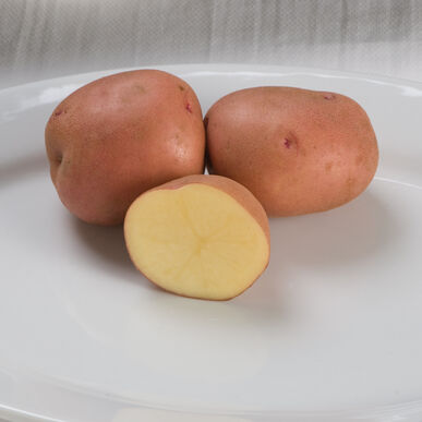 Red Gold Potatoes