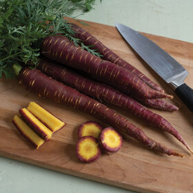 Purple Elite Colored Carrots
