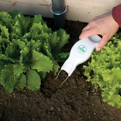 Lucko Wire Weeder Weeders and Cultivators