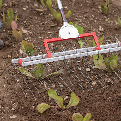 "Flex Tine Weeder – 30"" Weeders and Cultivators"