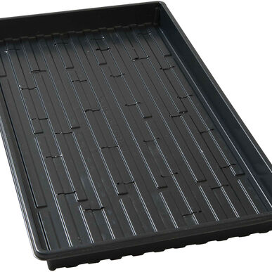 Shallow Germination Trays – 5 Count Trays, Domes, and Flats