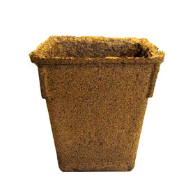 "4"" Square/Tall CowPots™ – 20 Count Biodegradable Pots"