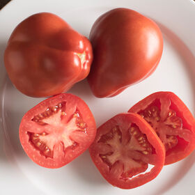 Red Pear Piriform Heirloom Tomatoes