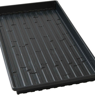 Shallow Germination Trays – 100 Count Support Trays