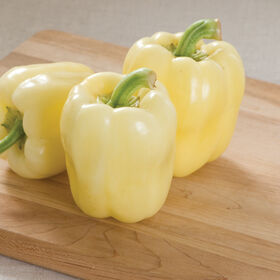 Bianca Sweet Bell Peppers