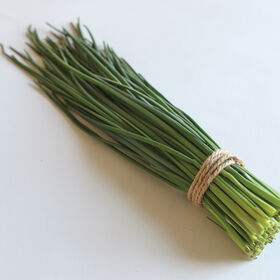 Dolores Standard Chives