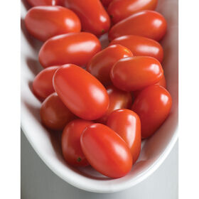 Five Star Grape Grape Tomatoes