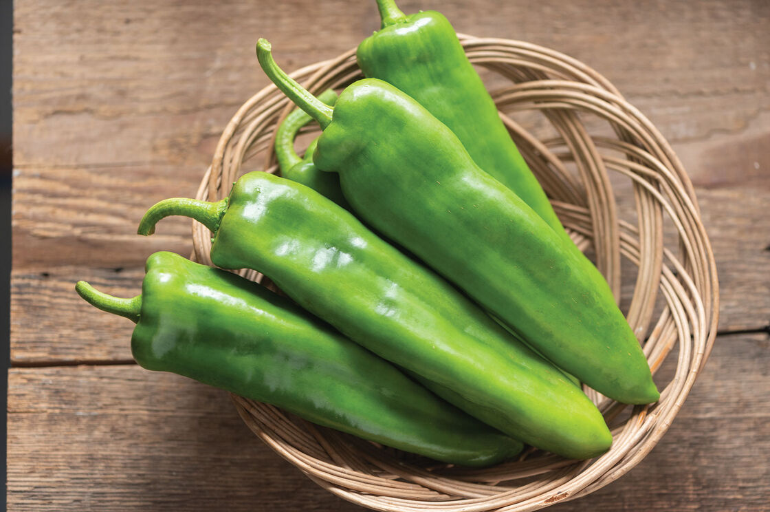Charger Anaheim Pepper Seeds Hatch Chili Seeds Johnny S Selected Seeds