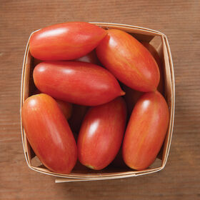 Pink Tiger Specialty Tomatoes