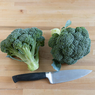 Eastern Magic Standard Broccoli