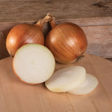 Talon Full-Size Onions