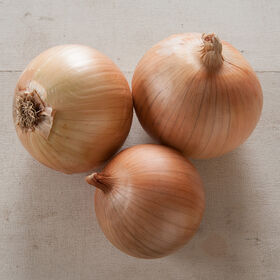 Scout Full-Size Onions