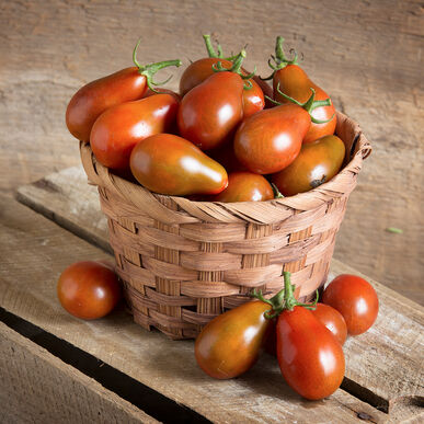 Chocolate Pear Specialty Tomatoes