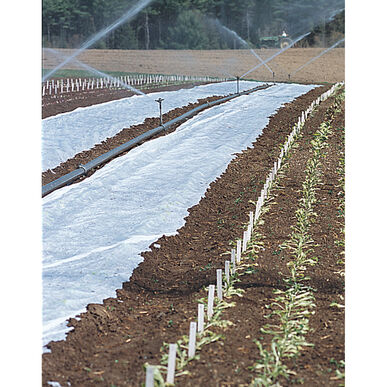 "Agribon+ AG-19 – 83"" x 250' Row Cover"