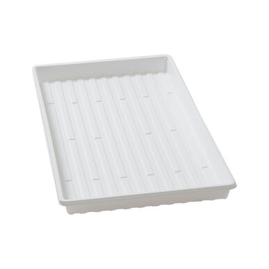 Shallow Leakproof Trays – 36 Count Trays, Domes, and Flats