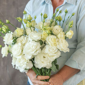 Voyage 2 White Improved Lisianthus