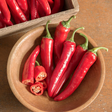 Red Ember Hot Peppers