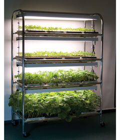 Full-Size Seedling Light Cart – 16 Trays, 640 Watts Grow Lights and Carts