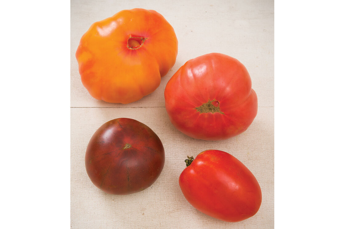 Heirloom Tomato Collection Organic Seed Johnny S Selected Seeds