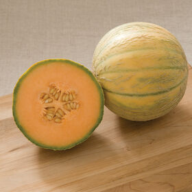Escorial French Melons (Charentais)