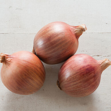 Blush Full-Size Onions