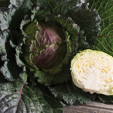 Deadon Fresh Market Cabbage