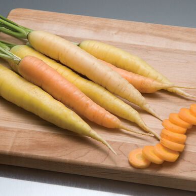 Rainbow Main Crop Carrots