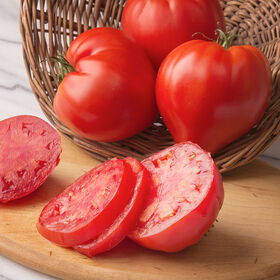 Cauralina Specialty Tomatoes