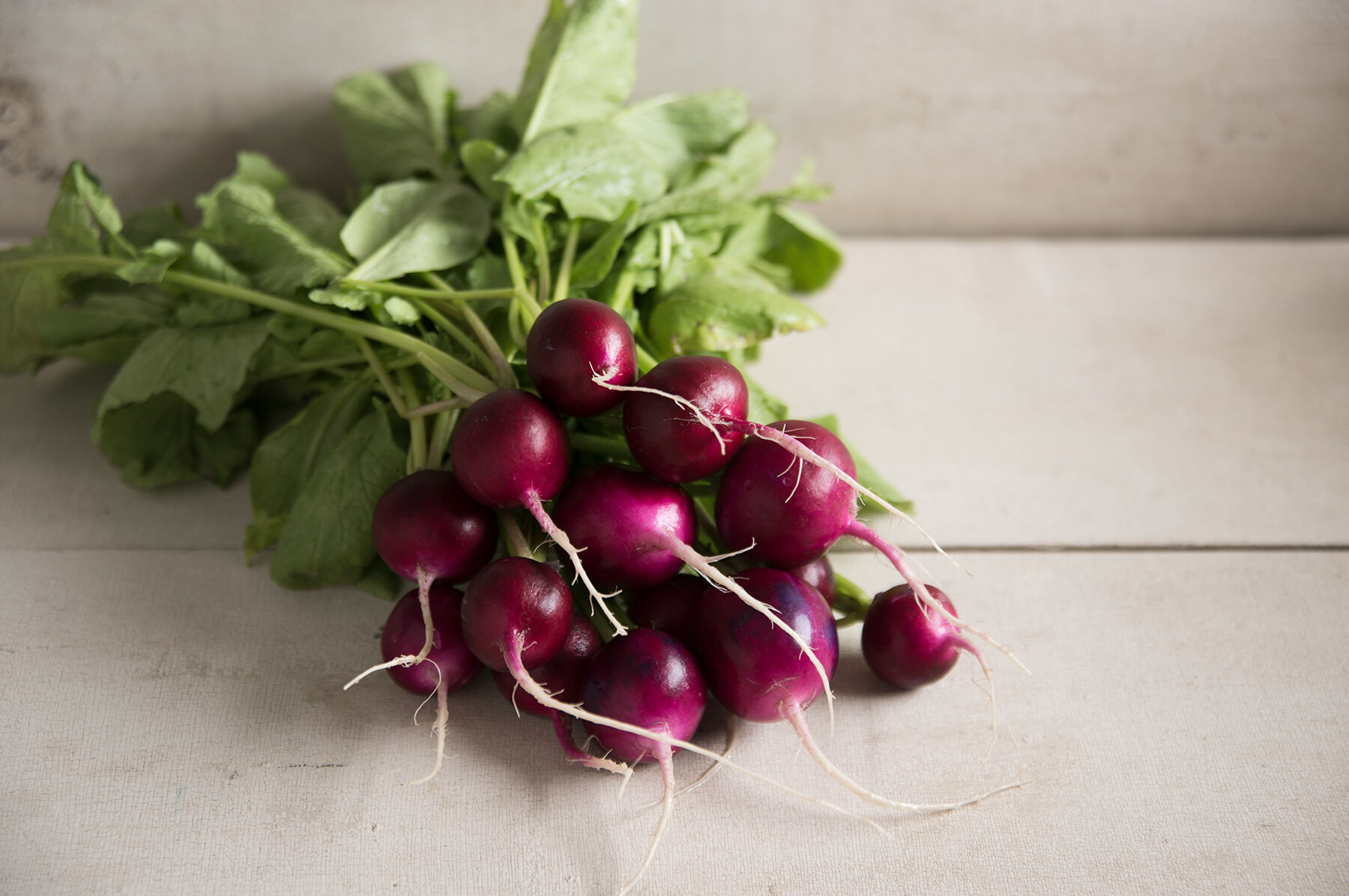 Picture Packet Kings Seeds Radish Vegetable Bacchus F1