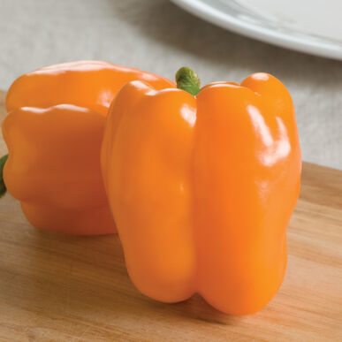 Gourmet Sweet Bell Peppers