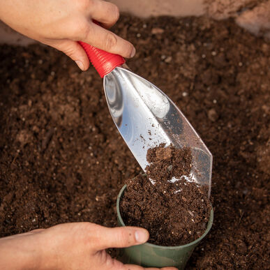Trowel – All Purpose Trowels and Diggers