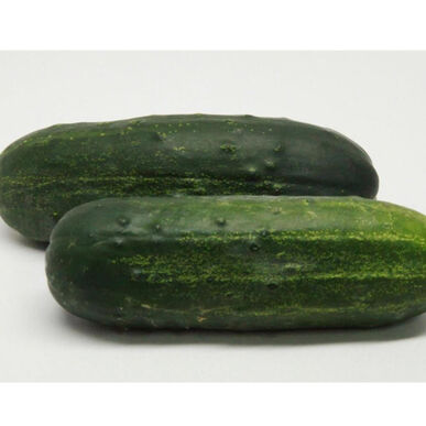 Supremo Pickling Cucumbers
