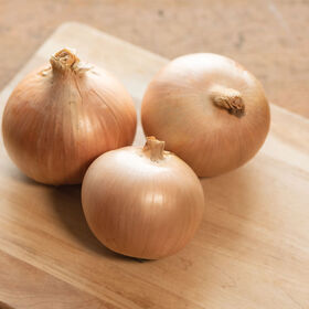 Calibra Full-Size Onions