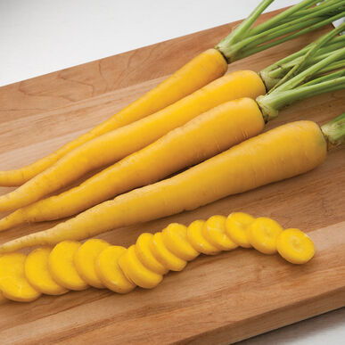 Yellowbunch Colored Carrots
