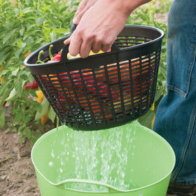 Small Gorilla Tub® Colander – Black Gorilla Tubs®