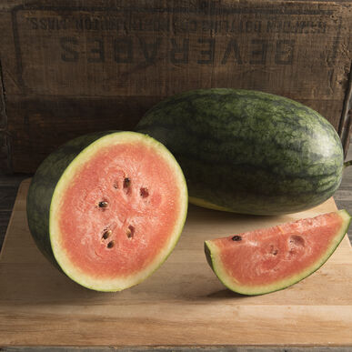 Dark Belle Diploid Watermelons