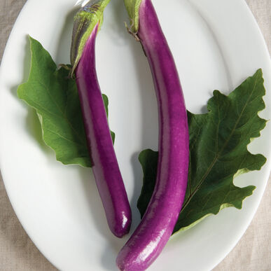 Machiaw Asian Eggplants