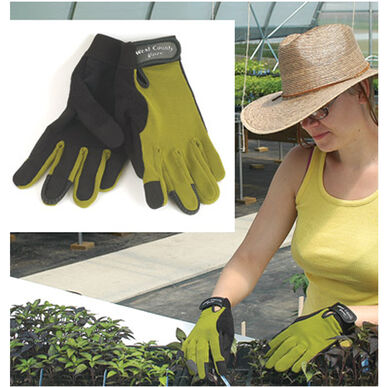 Women's Stem – L Gloves