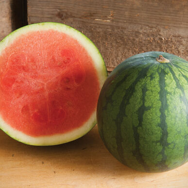 Sorbet Triploid Watermelons (Seedless)