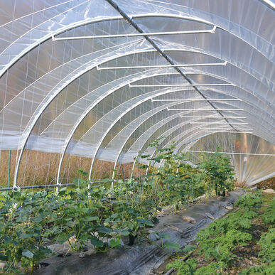 Moveable Caterpillar Tunnel – 12' Wide Benders