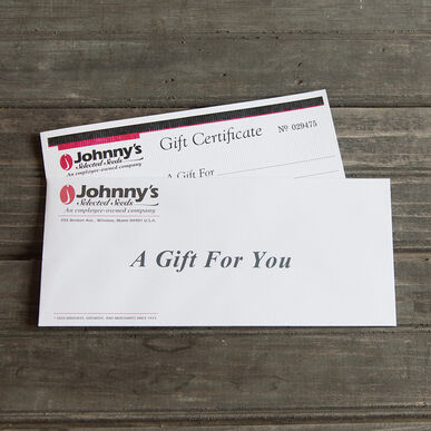 Gift Certificate – $100.00 Gift Certificates