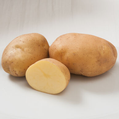 Satina Potatoes