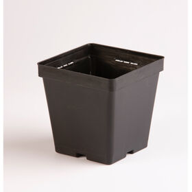 Maxi Square Plastic Pots – 18 Count Containers