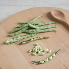 Flagrano Fresh Shell Beans